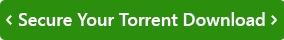 secure torrent