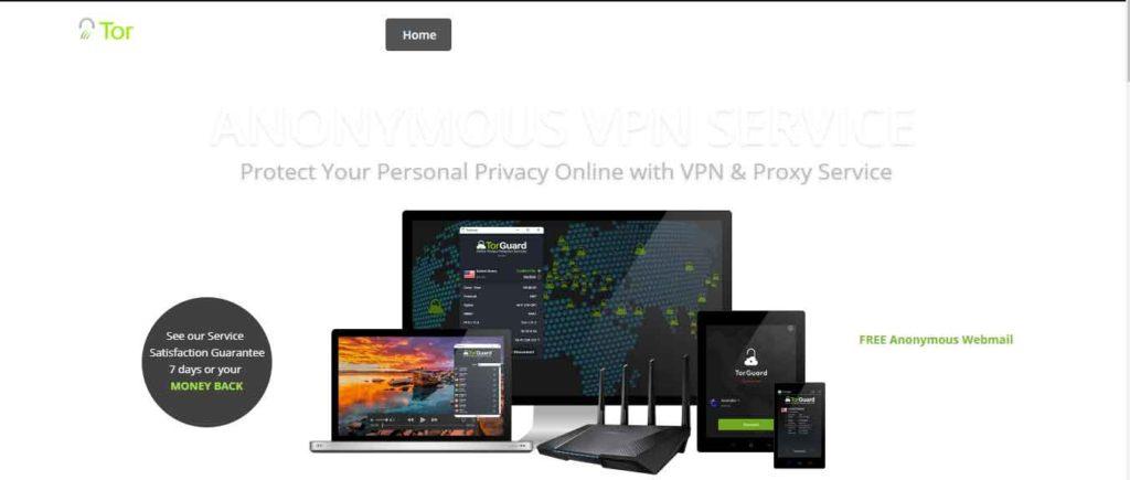 Torguard VPN for browser