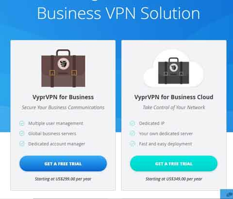 VyprVPN Business Plans