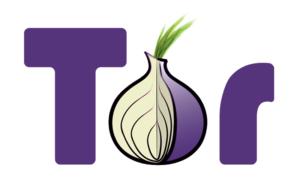 VPN Venezuela vs Tor