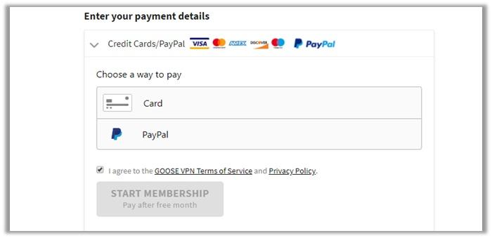 GOOSE VPN Payment Methods