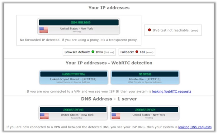 Goose VPN IPLeak Test US